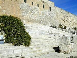 Southern_steps_leading_to_Temple_Mount_tb_n020101